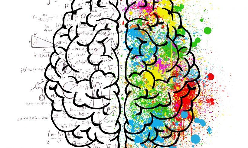 Alzheimer: è nell'area che regola l'umore l'origine – Biofortificazione come prevenzione